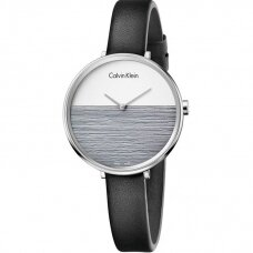 CALVIN KLEIN laikrodis K7A231C3