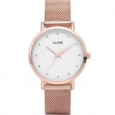 Laikrodis CLUSE CW0101202002